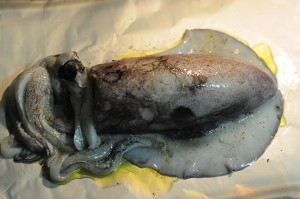 Stuffed Squid In Foil